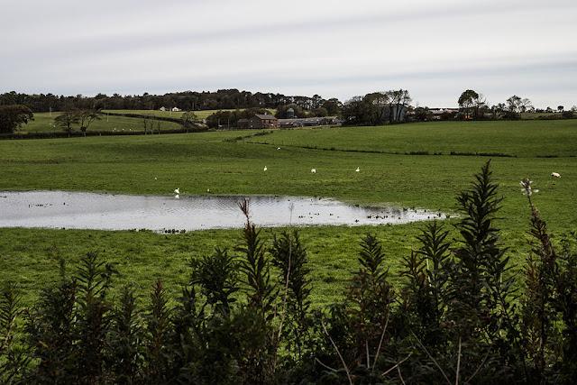 Birks Farm, Cleator Moor
