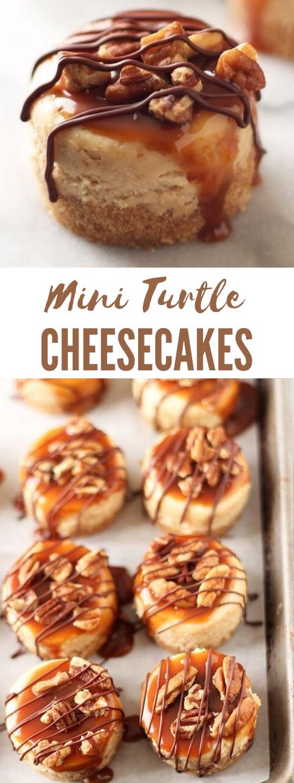 Mini Turtle Cheesecakes #desserts #cakes #party #easy #recipes