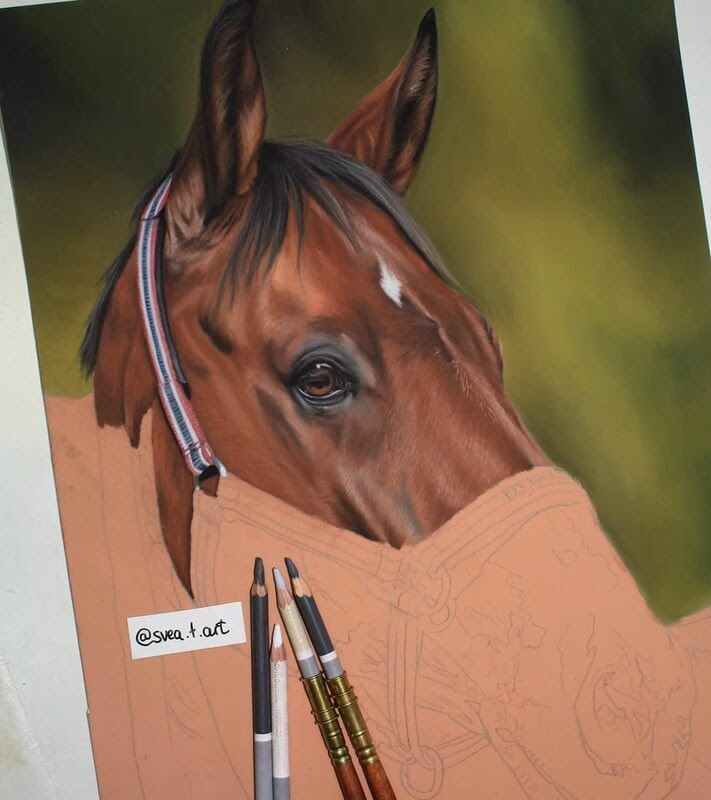 04-Horse-WIP-10-Svea-T-Animal-Portrait-Drawings-and-an-Eye-www-designstack-co