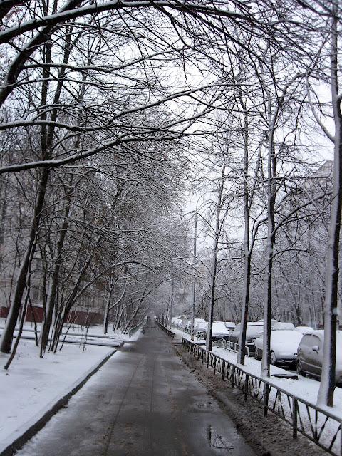 Вроде, зима