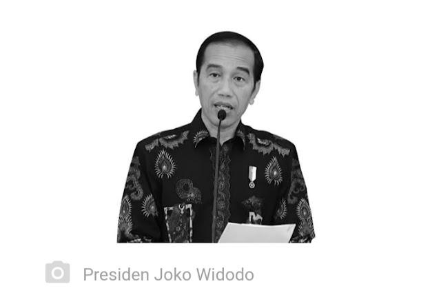 Jokowi Bicara Myanmar, Natalius Pigai Singgung Pelanggaran HAM di Papua
