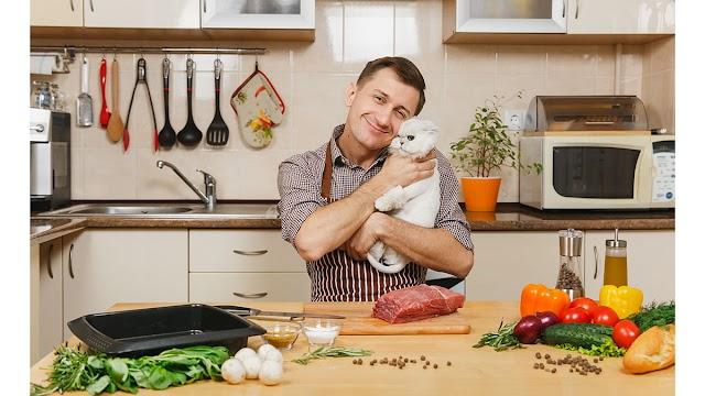 Γάτα: Τι να τρώει για να έχει λαμπερό και υγιές τρίχωμα