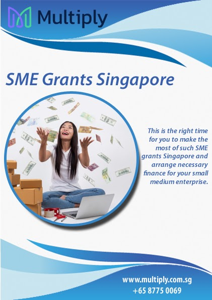 SME Singapore Grant Comes with High Subsidy!