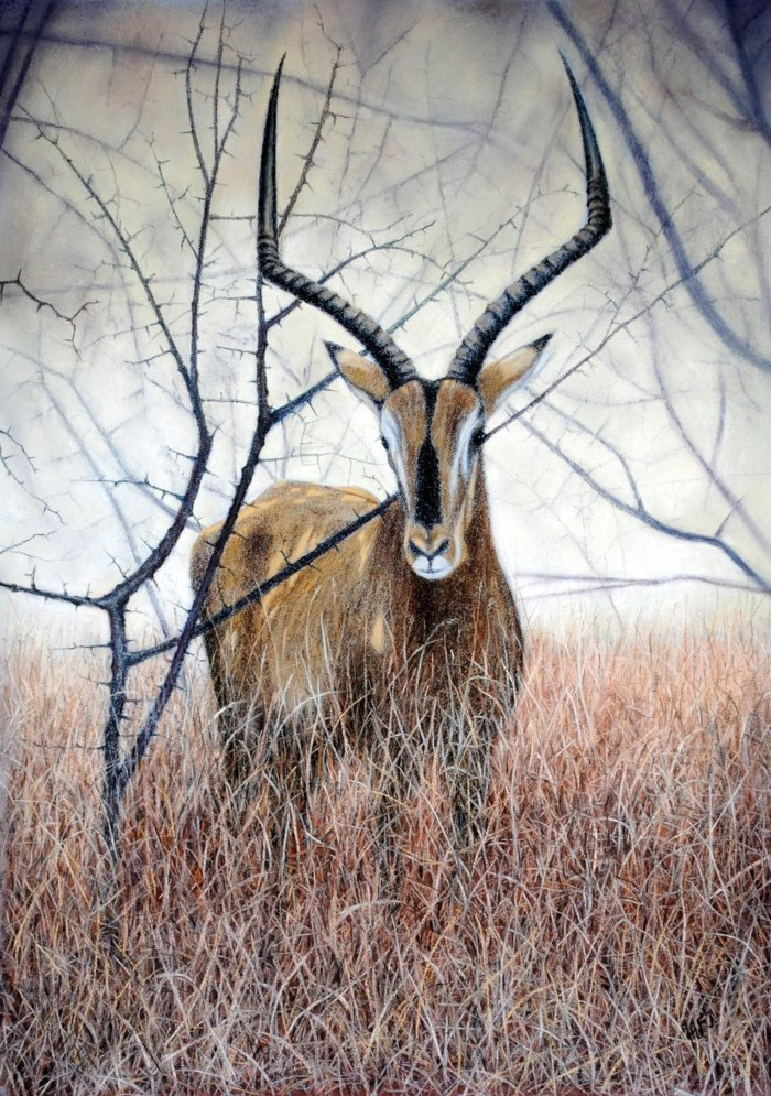 Картины пастелью. Ivan Jones