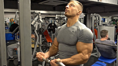 Build Bigger Arms with FST-7 Training Routine