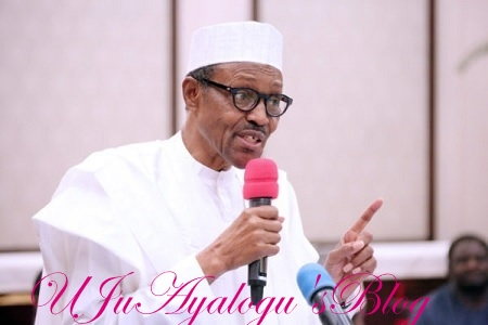 Buhari: Ex-presidents who nearly destroyed Nigeria criticise us shamelessly