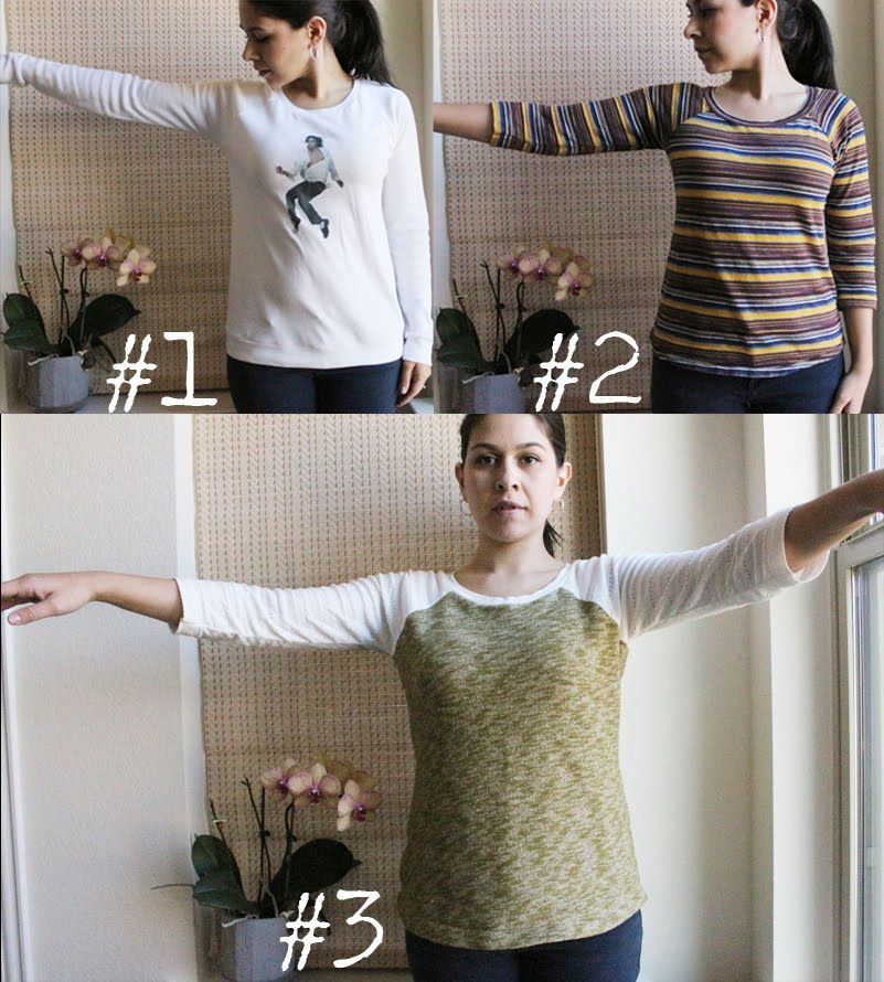 updated Lane raglan sewing pattern comparison