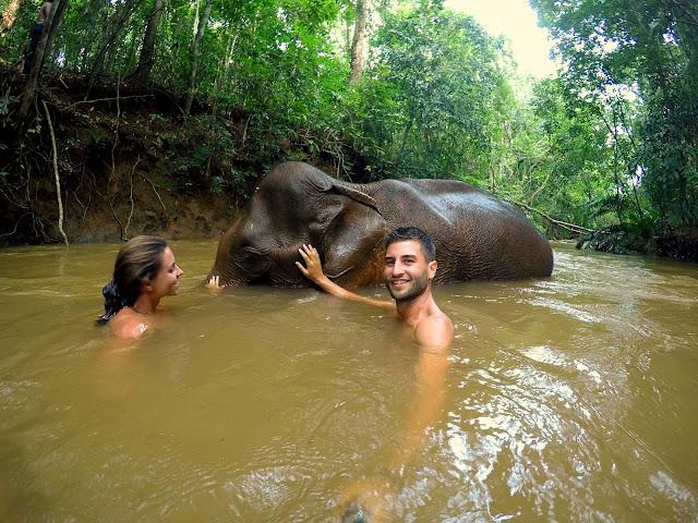 bañarse con elefantes