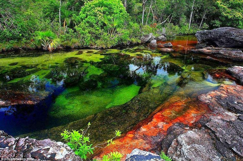 جمال الطبيعه فى نهر كولومبيا سبحان الله - معرفة