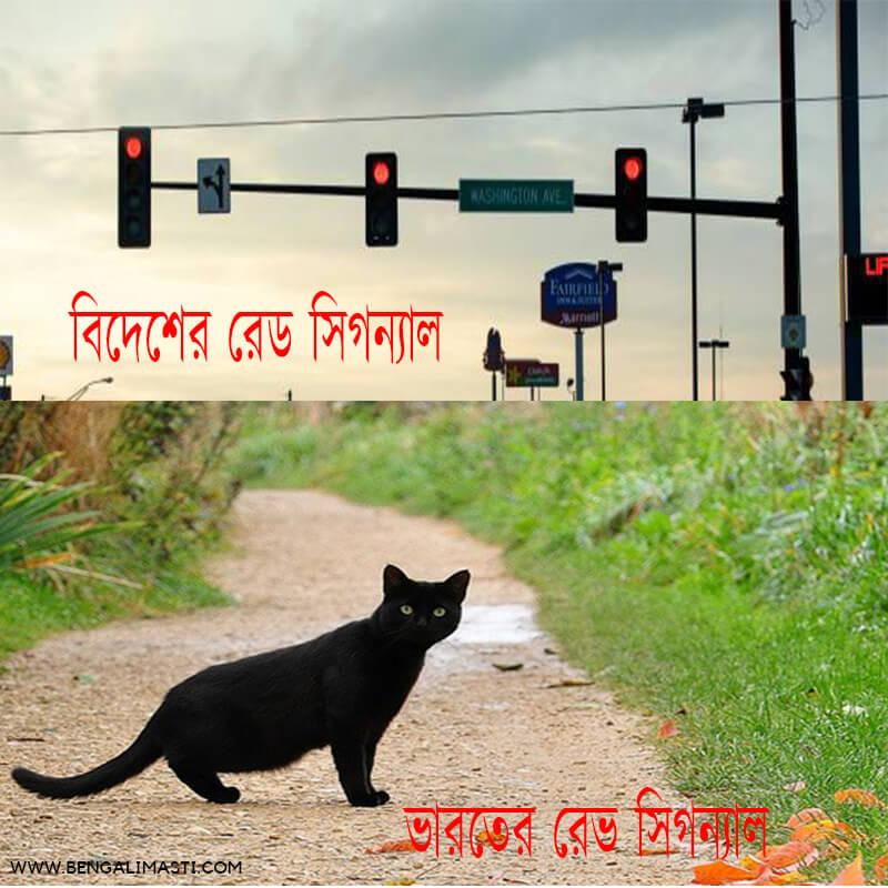 latest bengali jokes for whatsapp