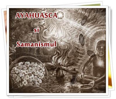 pareri forum ayahuasca dmt retreat romania pret