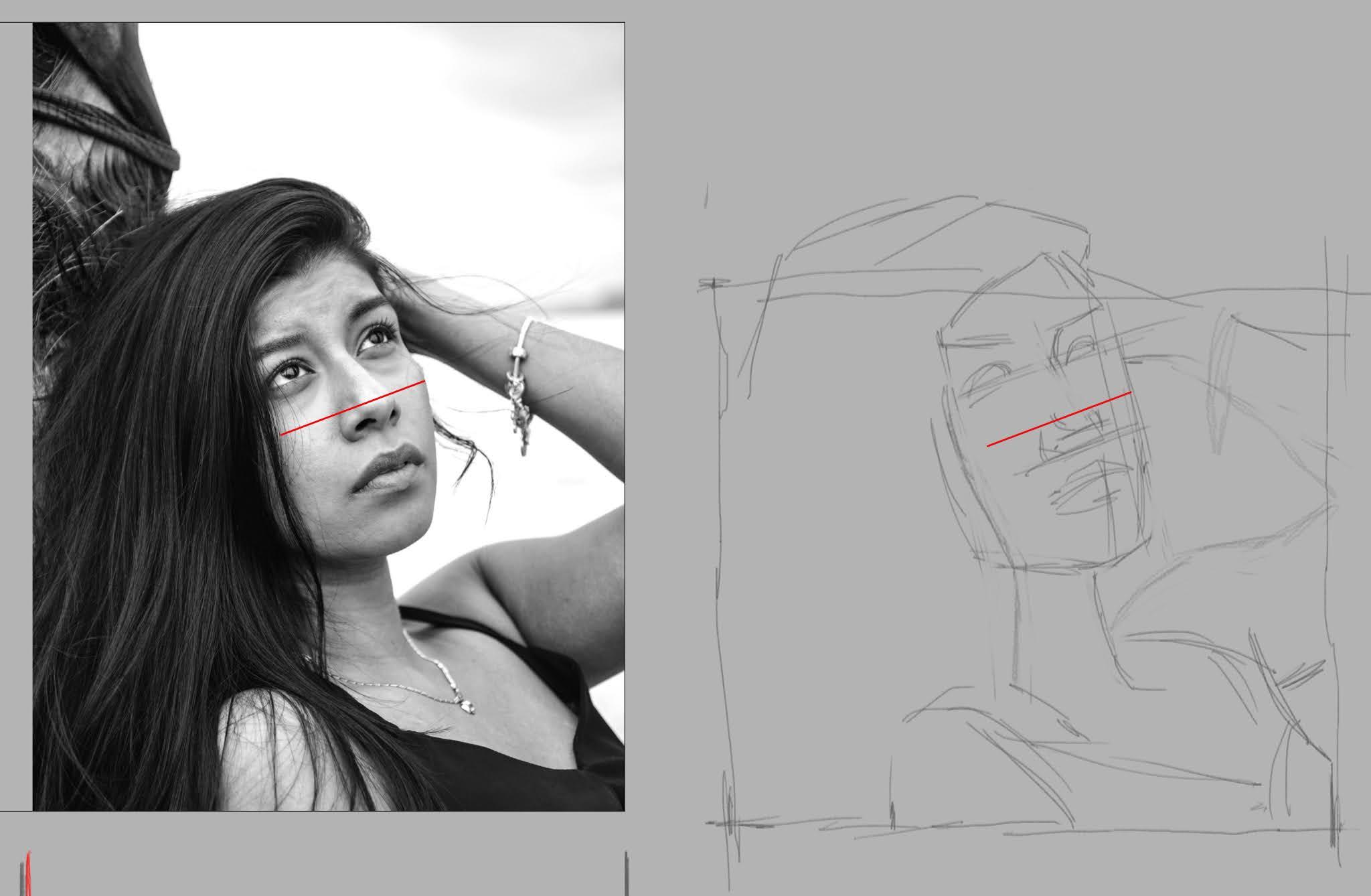 Controllo della larghezza del volto di una ragazza disegnato a matita visto di tre quarti.