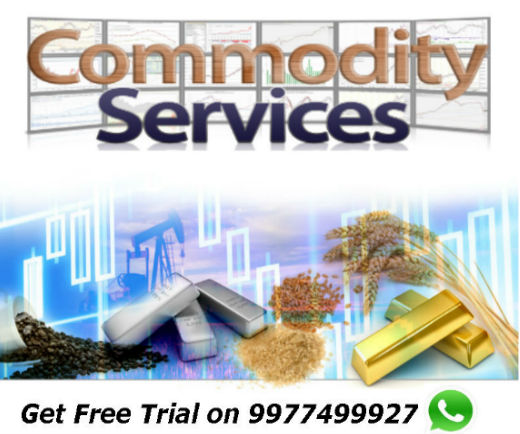 Commodity Updated Tips : 15 Feb 2017