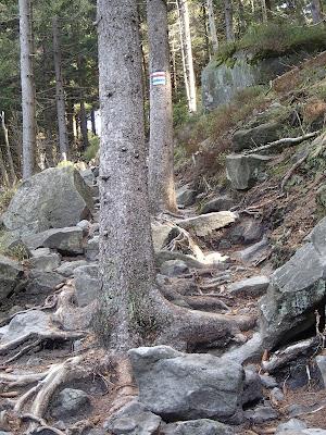 Sudety, Góry Stołowe, Błędne Skały