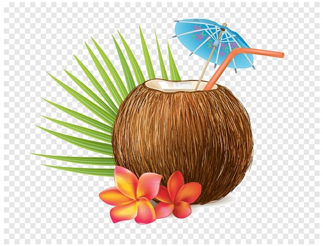 Drink Coconut Water and Feel 6 Benefits When Consuming