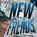 Mistake - New Friends