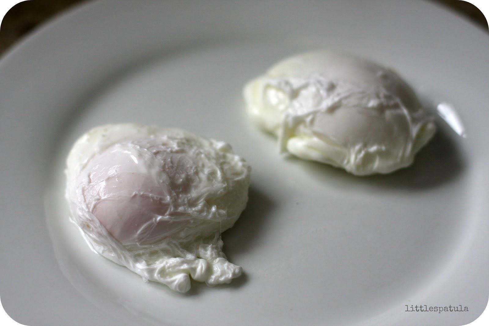 Little Spatula Poached Eggs