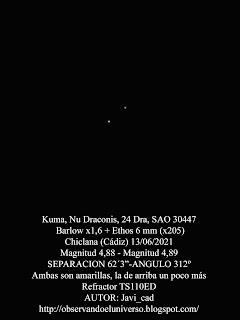 Estrella Doble Kuma