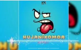 Download Audio |  Harmonize – Hujanikomoa Mp3