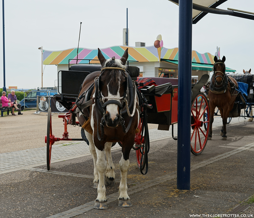 Horse and Carraige Ride in Great Yarmouth