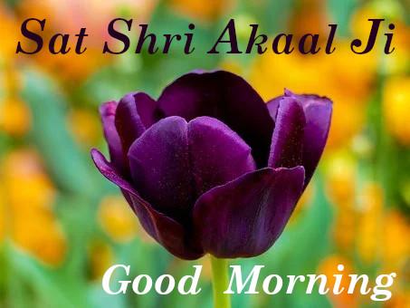Sat Shri Akaal ji