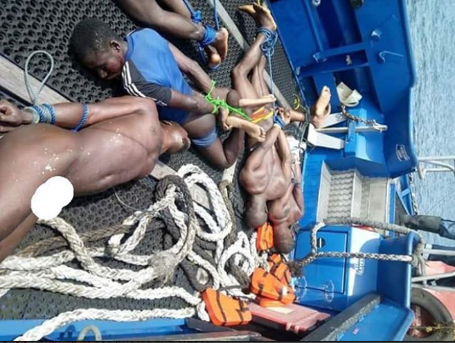 See photo of the 5 sea pirates caught this morning