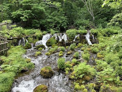 ふきだし公園の湧き水