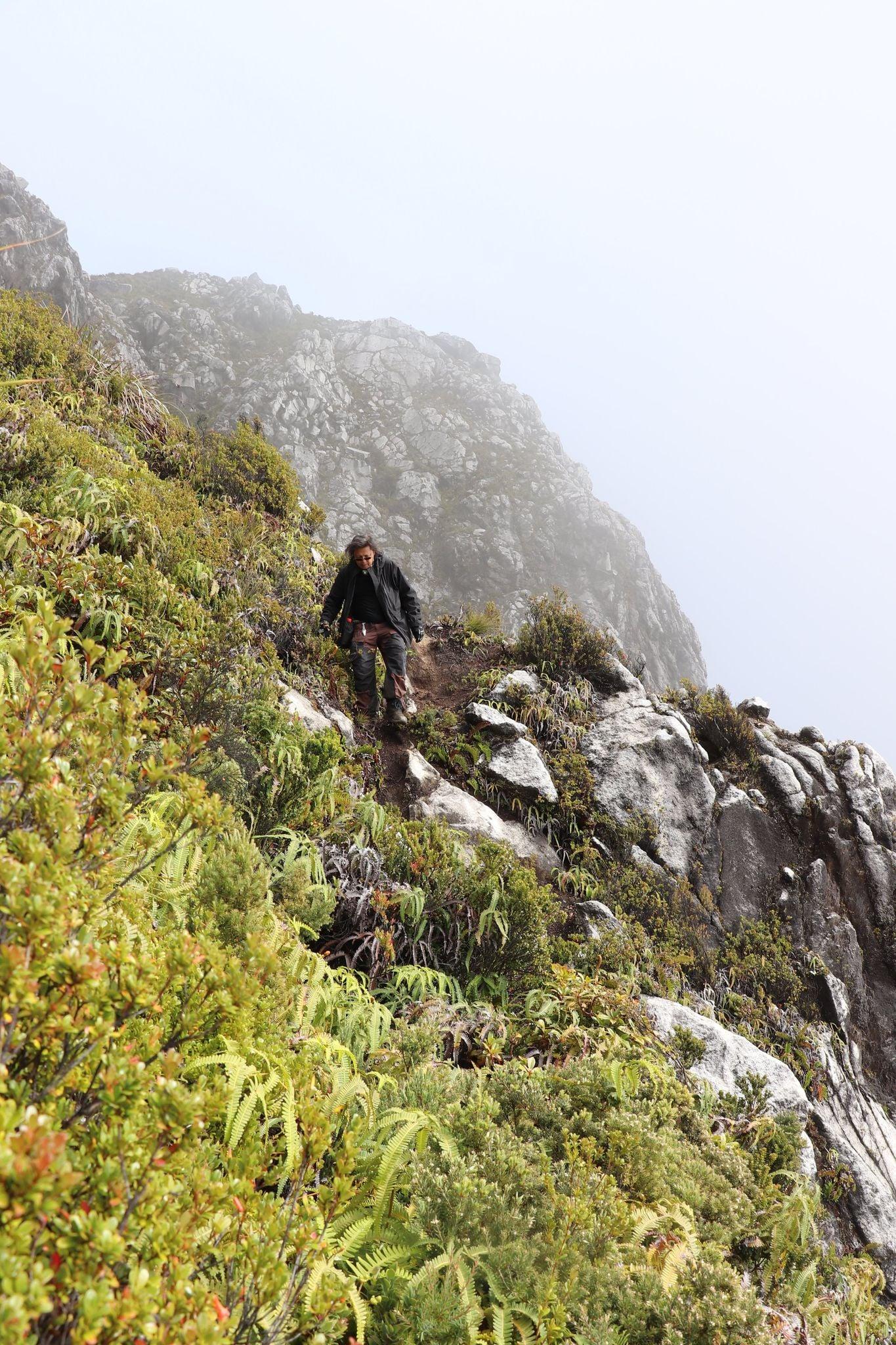 Trekkers Hikers Climbing Mt. Apo