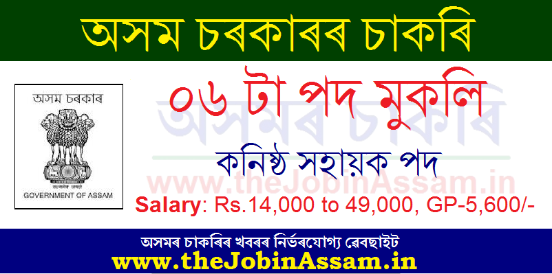DC Hojai Recruitment 2020