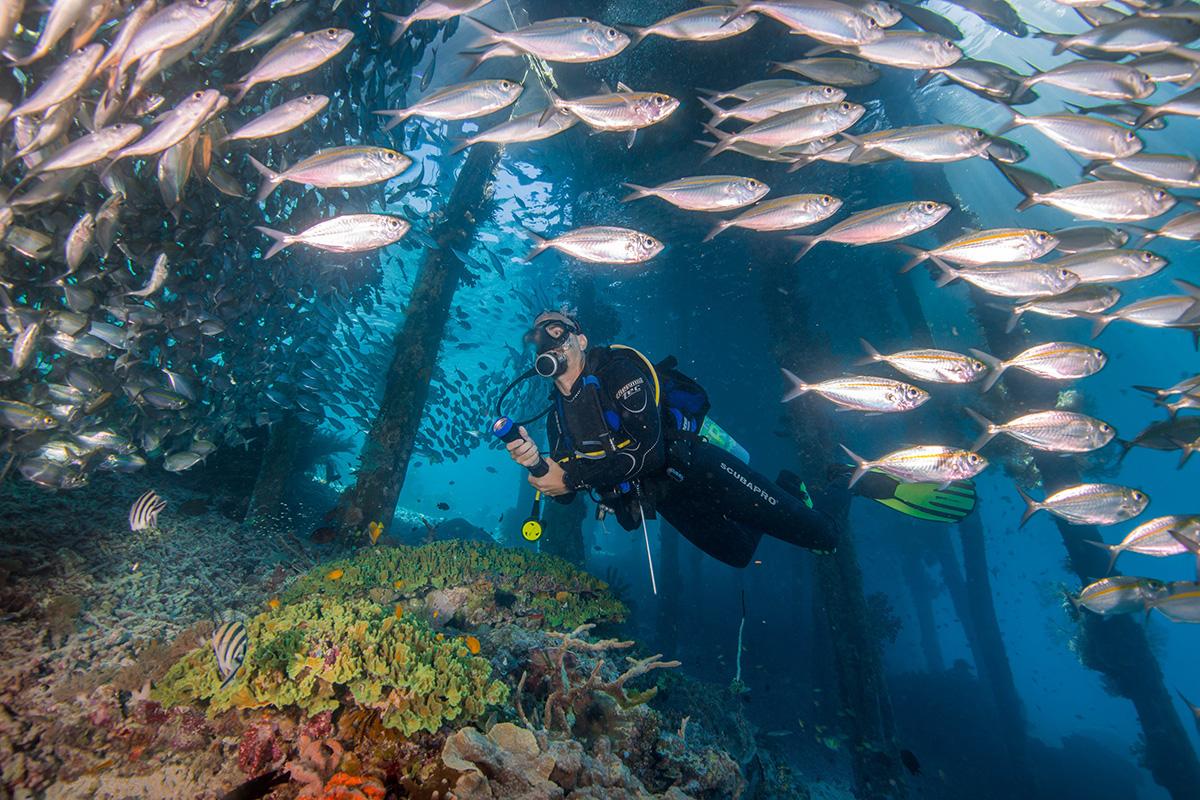 raja ampat dan lembah baliem destinasi wisata hijau papau impianku nurul sufitri blogger travel lifestyle enonusa