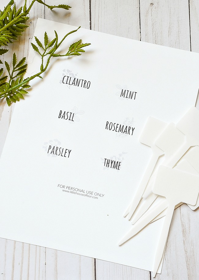 Supplies for DIY Dollar Tree herb labels