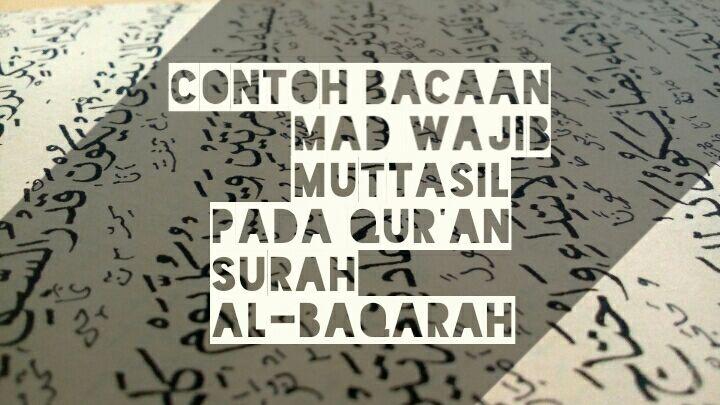 contoh hukum bacaan mad wajib muttasil dalam surat al-baqarah paling lengkap
