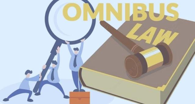 Omnibus Law, Solusi Demografi di Indonesia