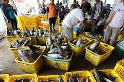 Hari Nelayan Nasional 6 April Yang Terlupakan