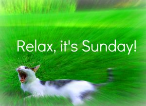 Funny%2BSunday%2BImages%2BHD%2B15