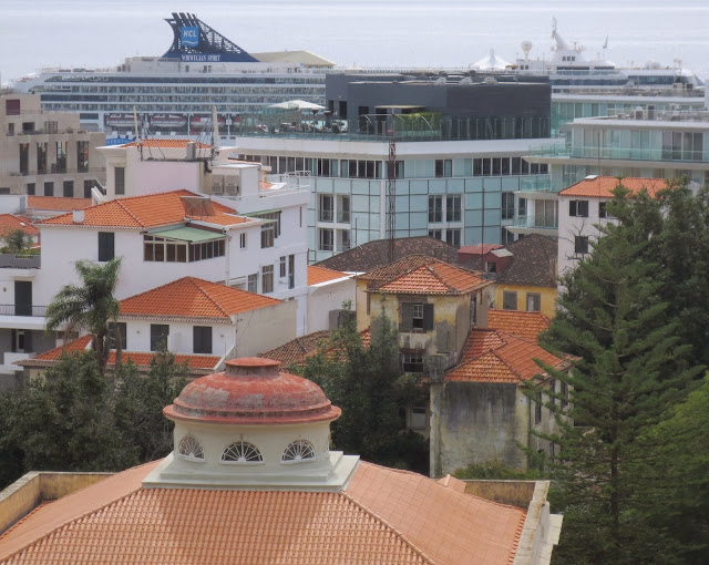 mixture of roofs and buildings and the cruise ship