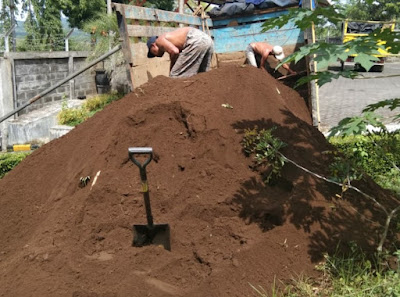 Jual Tanah Untuk Tanaman Di Malang