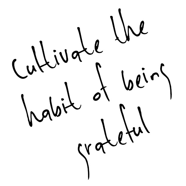 Cultivate the habit of being grateful image