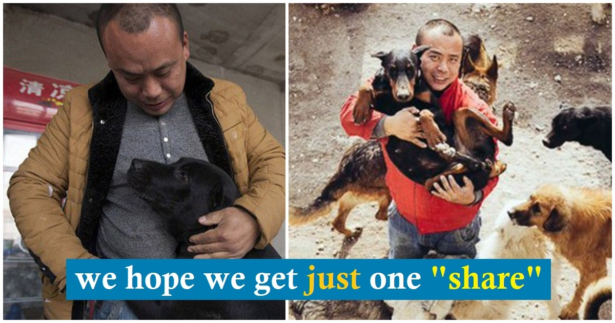 Millionaire spent his fortune turning slaughterhouse into dog sanctuary