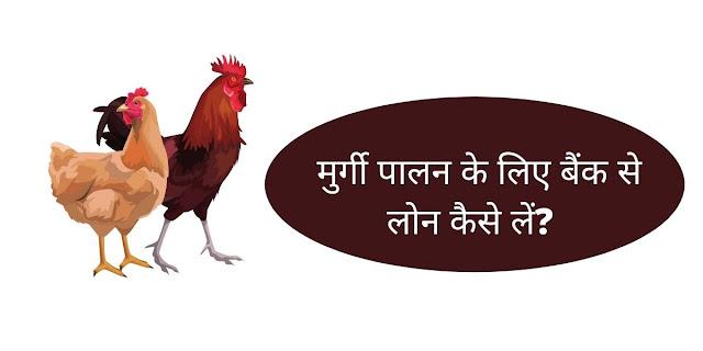 मुर्गी पालन के लिए बैंक से लोन कैसे लें?