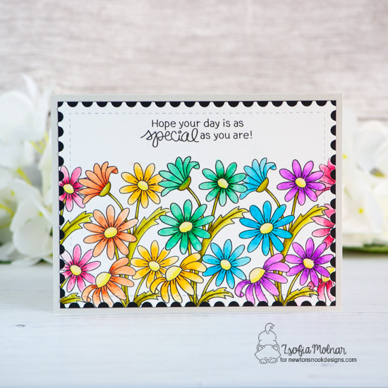 Rainbow of Daisies Card by Zsofia Molnar | Dainty Daisies Stamp Set and Framework Die Set by Newton's Nook Designs #newtonsnook #handmade