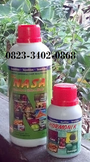 agen-nasa-di-sumpur-kudus-sijunjung-082334020868