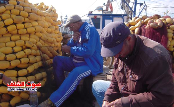 بالفيديو .. مشاكل بالجملة في مواجهة ممارسي مهنة الصيد بسواحل الشلف