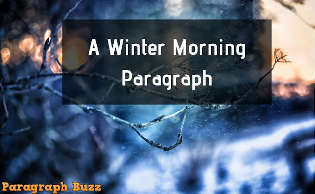 A Winter Morning Paragraph