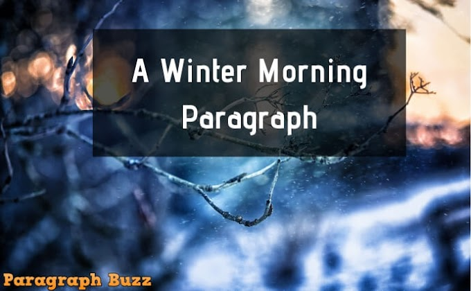 A Winter Morning Paragraph for All Classes