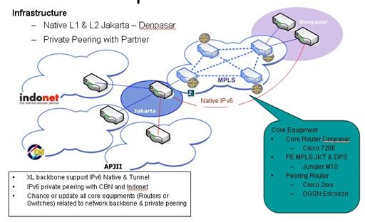 Gambar 3. Infrastruktur IPv6