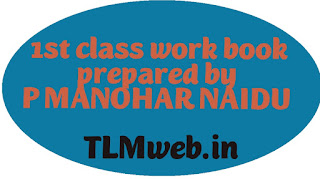 TLMweb® 1st class Maths work book