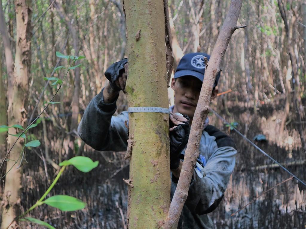 Reportase Proyek Pemantauan dan Kajian Ekosistem Mangrove IKAMaT dan YKAN di Semarang