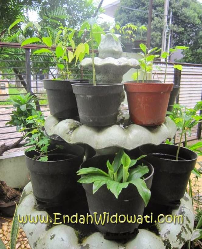 Aneka tanaman organik