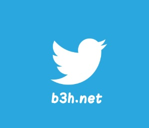 ماهو تويتر وكيف نستخدمه